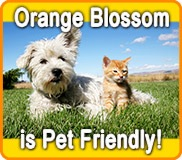 Orange Blossom KOA is Pet Friendly!